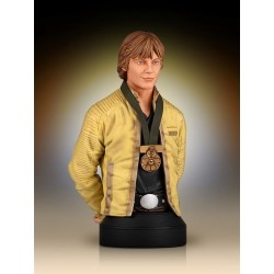 LUKE HERO OF YAVIN MINI BUST